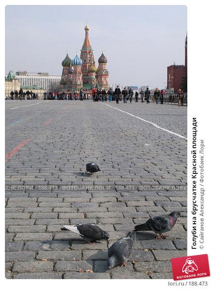 Голуби на брусчатке Красной площади, эксклюзивное фото № 188473, снято 13 марта 2005 г. (c) Сайганов Александр / Фотобанк Лори