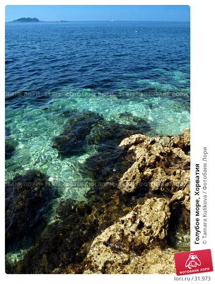 Голубое море, Хорватия, фото № 31973, снято 9 апреля 2007 г. (c) Tamara Kulikova / Фотобанк Лори