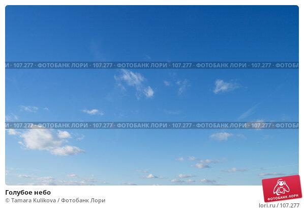 Голубое небо, фото № 107277, снято 30 октября 2007 г. (c) Tamara Kulikova / Фотобанк Лори