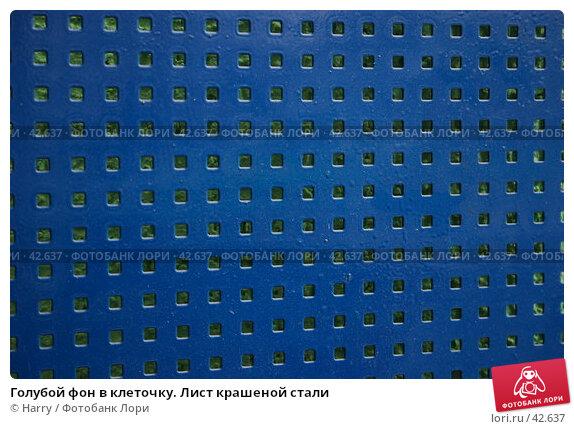 Купить «Голубой фон в клеточку. Лист крашеной стали», фото № 42637, снято 27 апреля 2007 г. (c) Harry / Фотобанк Лори