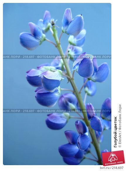 Купить «Голубой цветок», фото № 218697, снято 20 апреля 2018 г. (c) ElenArt / Фотобанк Лори