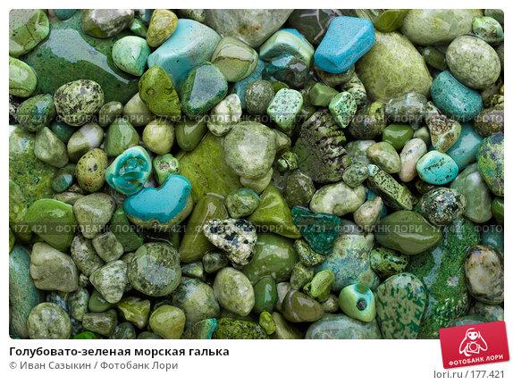 Голубовато-зеленая морская галька, фото № 177421, снято 9 ноября 2007 г. (c) Иван Сазыкин / Фотобанк Лори