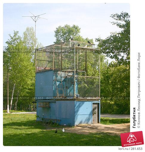 Голубятня, фото № 281653, снято 12 мая 2008 г. (c) Коннов Леонид Петрович / Фотобанк Лори
