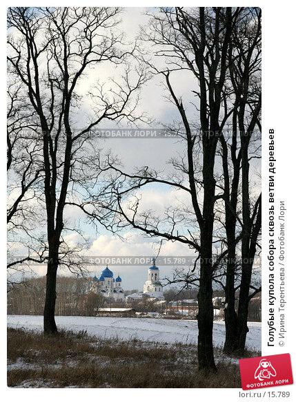 Голубые купола собора сквозь ветви деревьев, эксклюзивное фото № 15789, снято 5 ноября 2006 г. (c) Ирина Терентьева / Фотобанк Лори