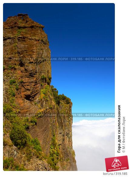 Гора для скалолазания, фото № 319185, снято 19 февраля 2017 г. (c) Михаил / Фотобанк Лори