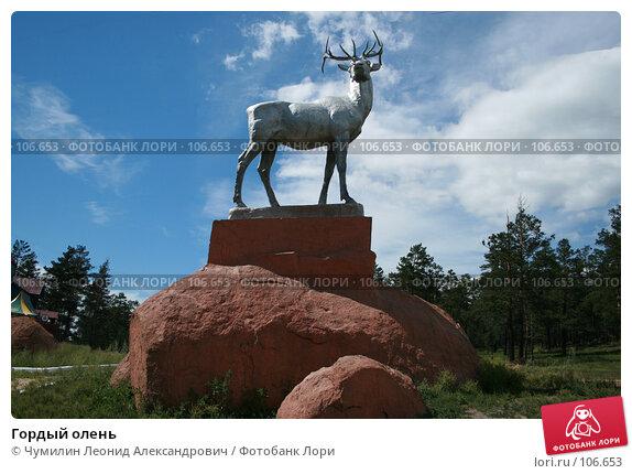 Гордый олень, фото № 106653, снято 21 июля 2007 г. (c) Чумилин Леонид Александрович / Фотобанк Лори
