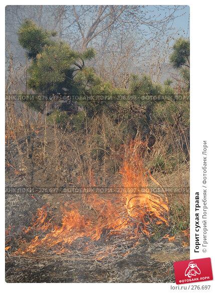 Горит сухая трава, фото № 276697, снято 7 мая 2008 г. (c) Григорий Погребняк / Фотобанк Лори