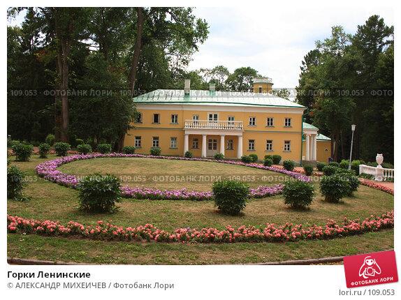 Купить «Горки Ленинские», фото № 109053, снято 21 июля 2007 г. (c) АЛЕКСАНДР МИХЕИЧЕВ / Фотобанк Лори