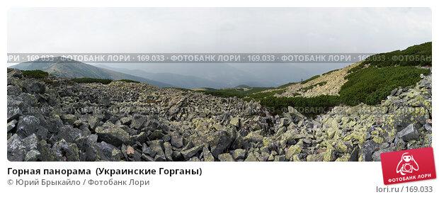 Горная панорама  (Украинские Горганы), фото № 169033, снято 30 мая 2017 г. (c) Юрий Брыкайло / Фотобанк Лори