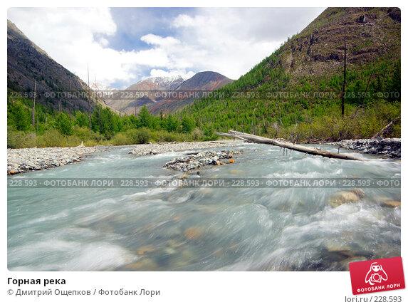 Горная река, фото № 228593, снято 16 августа 2007 г. (c) Дмитрий Ощепков / Фотобанк Лори