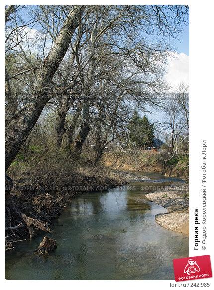 Горная река, фото № 242985, снято 4 апреля 2008 г. (c) Федор Королевский / Фотобанк Лори