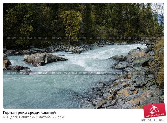 Горная река среди камней, фото № 310049, снято 21 января 2017 г. (c) Андрей Пашкевич / Фотобанк Лори