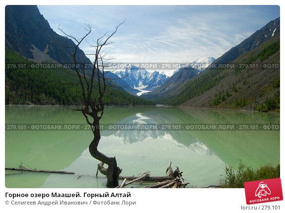 Горное озеро Маашей. Горный Алтай, фото № 279101, снято 14 июля 2006 г. (c) Селигеев Андрей Иванович / Фотобанк Лори