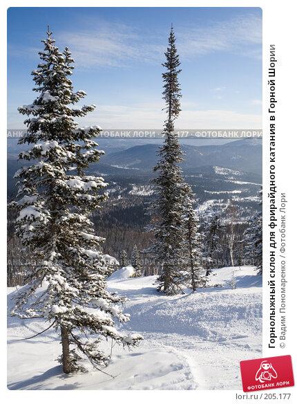 Горнолыжный склон для фрирайдного катания в Горной Шории, фото № 205177, снято 17 февраля 2008 г. (c) Вадим Пономаренко / Фотобанк Лори