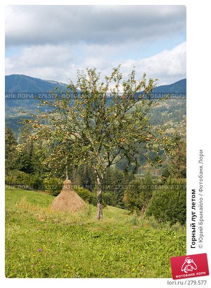 Горный луг летом, фото № 279577, снято 2 сентября 2007 г. (c) Юрий Брыкайло / Фотобанк Лори