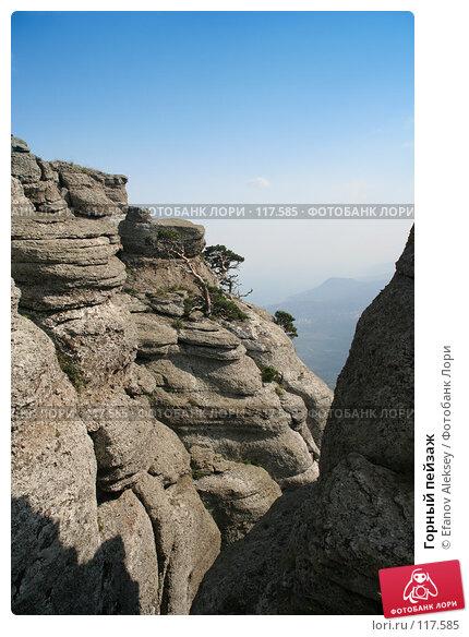 Горный пейзаж, фото № 117585, снято 24 июля 2006 г. (c) Efanov Aleksey / Фотобанк Лори