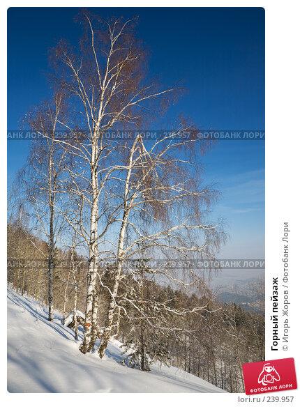 Горный пейзаж, фото № 239957, снято 10 февраля 2008 г. (c) Игорь Жоров / Фотобанк Лори
