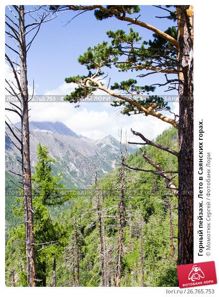 Горный пейзаж. Лето в Саянских горах., фото № 26765753, снято 2 августа 2017 г. (c) Момотюк Сергей / Фотобанк Лори