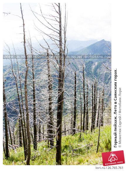 Купить «Горный пейзаж. Лето в Саянских горах.», фото № 26765761, снято 2 августа 2017 г. (c) Момотюк Сергей / Фотобанк Лори