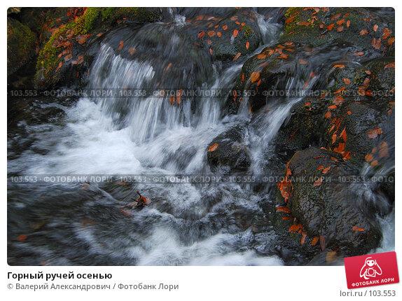 Купить «Горный ручей осенью», фото № 103553, снято 21 апреля 2018 г. (c) Валерий Александрович / Фотобанк Лори