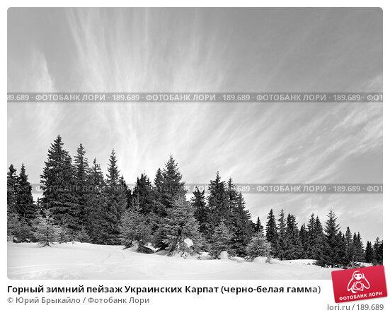 Горный зимний пейзаж Украинских Карпат (черно-белая гамма), фото № 189689, снято 3 января 2008 г. (c) Юрий Брыкайло / Фотобанк Лори