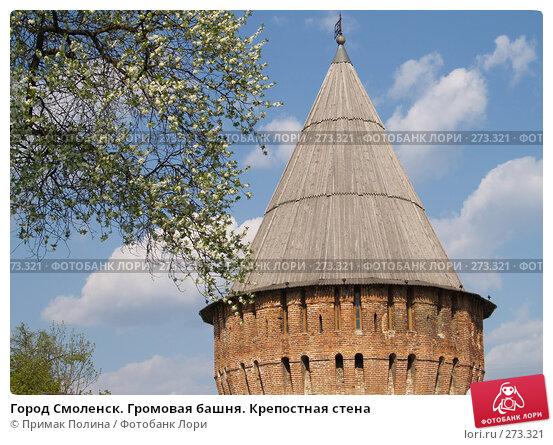 Купить «Город Смоленск. Громовая башня. Крепостная стена», фото № 273321, снято 5 мая 2008 г. (c) Примак Полина / Фотобанк Лори