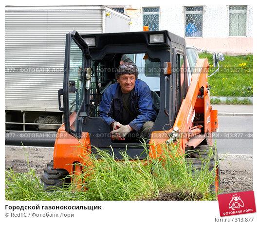 Купить «Городской газонокосильщик», фото № 313877, снято 6 июня 2008 г. (c) RedTC / Фотобанк Лори