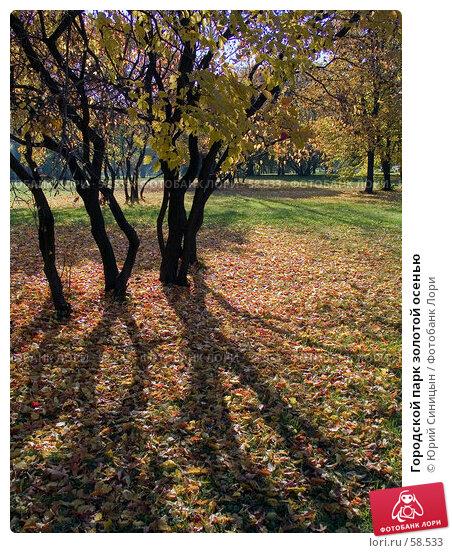 Городской парк золотой осенью, фото № 58533, снято 16 октября 2004 г. (c) Юрий Синицын / Фотобанк Лори