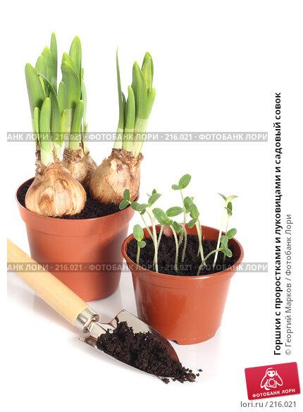 Горшки с проростками и луковицами и садовый совок, фото № 216021, снято 25 февраля 2008 г. (c) Георгий Марков / Фотобанк Лори