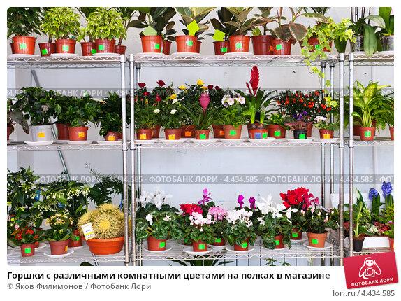 Югорск доставка цветов на дом