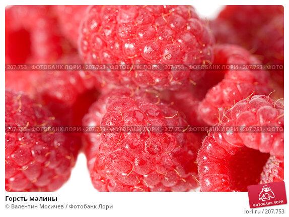 Купить «Горсть малины», фото № 207753, снято 20 января 2008 г. (c) Валентин Мосичев / Фотобанк Лори