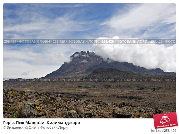 Купить «Горы. Пик Мавензи. Килиманджаро», фото № 258429, снято 28 января 2008 г. (c) Знаменский Олег / Фотобанк Лори