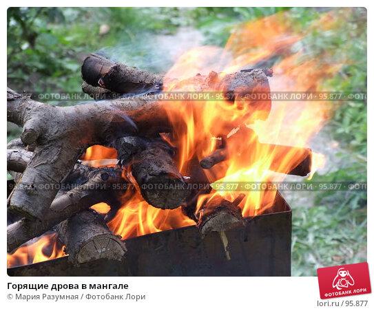 Горящие дрова в мангале, фото № 95877, снято 4 августа 2007 г. (c) Мария Разумная / Фотобанк Лори