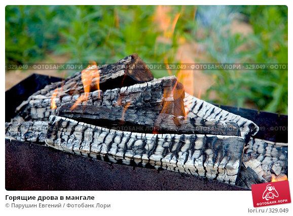 Горящие дрова в мангале, фото № 329049, снято 23 октября 2016 г. (c) Парушин Евгений / Фотобанк Лори