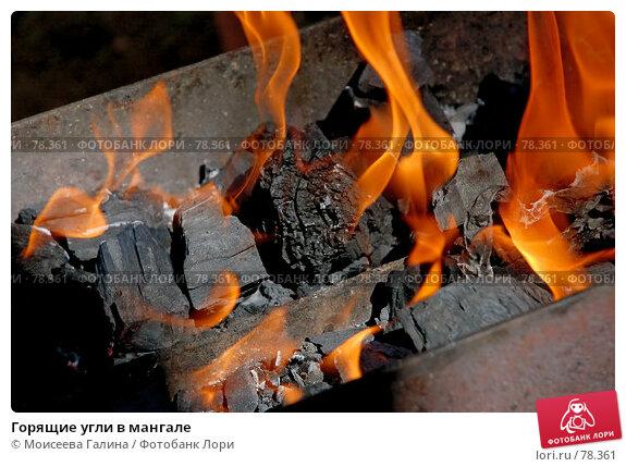 Горящие угли в мангале, фото № 78361, снято 9 августа 2007 г. (c) Моисеева Галина / Фотобанк Лори