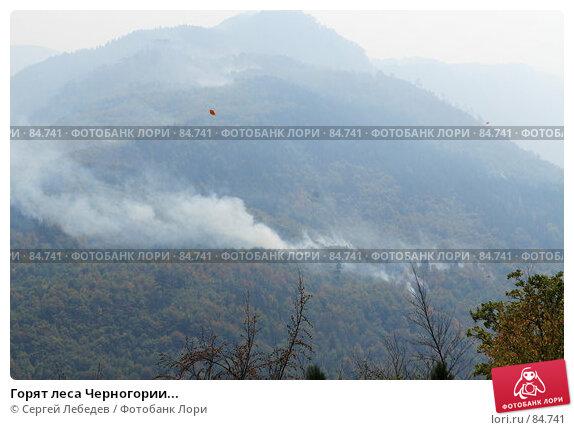 Горят леса Черногории..., фото № 84741, снято 29 августа 2007 г. (c) Сергей Лебедев / Фотобанк Лори