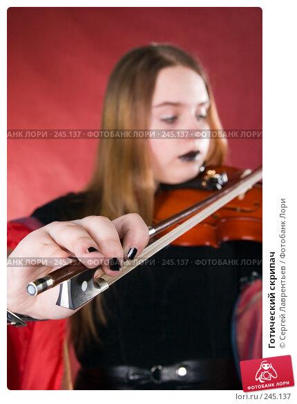 Готический скрипач, фото № 245137, снято 29 марта 2008 г. (c) Сергей Лаврентьев / Фотобанк Лори