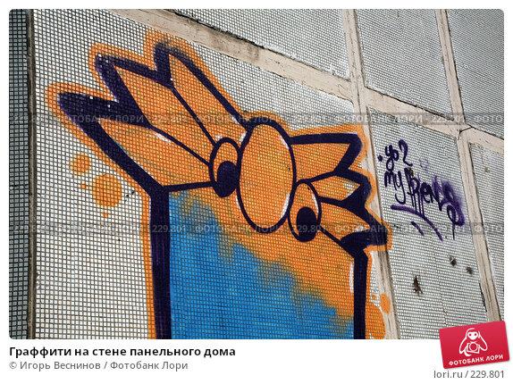Граффити на стене панельного дома, фото № 229801, снято 22 марта 2008 г. (c) Игорь Веснинов / Фотобанк Лори