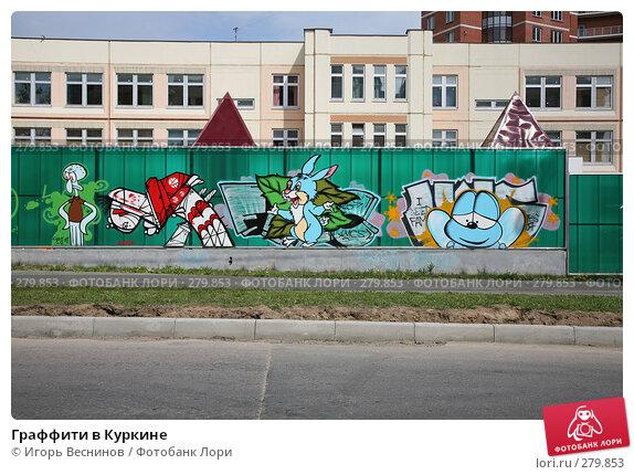 Граффити в Куркине, фото № 279853, снято 10 мая 2008 г. (c) Игорь Веснинов / Фотобанк Лори