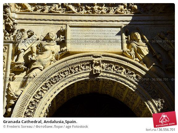 Granada Cathedral, Andalusia,Spain. Стоковое фото, фотограф Frederic Soreau / age Fotostock / Фотобанк Лори