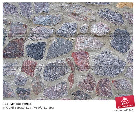 Гранитная стена, фото № 246081, снято 9 июня 2007 г. (c) Юрий Борисенко / Фотобанк Лори