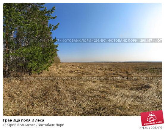 Граница поля и леса, фото № 296497, снято 4 мая 2008 г. (c) Юрий Бельмесов / Фотобанк Лори