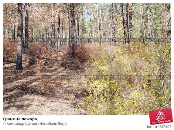Граница пожара, эксклюзивное фото № 207897, снято 20 сентября 2007 г. (c) Александр Щепин / Фотобанк Лори