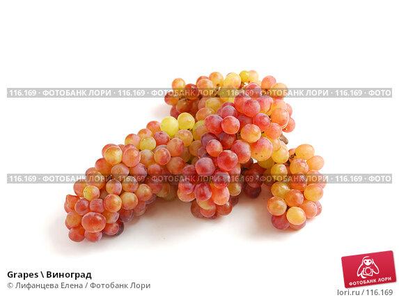 Grapes \ Виноград, фото № 116169, снято 13 ноября 2007 г. (c) Лифанцева Елена / Фотобанк Лори