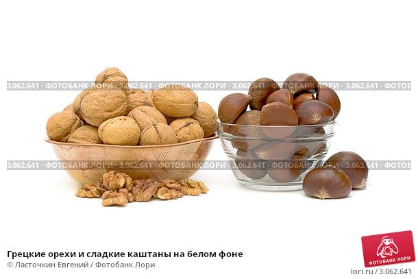 Купить «Грецкие орехи и сладкие каштаны на белом фоне», фото № 3062641, снято 20 декабря 2011 г. (c) Ласточкин Евгений / Фотобанк Лори