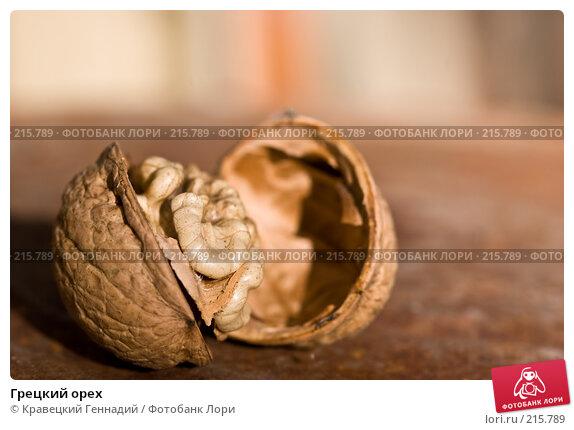 Грецкий орех, фото № 215789, снято 1 октября 2005 г. (c) Кравецкий Геннадий / Фотобанк Лори