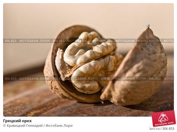 Грецкий орех, фото № 306853, снято 1 октября 2005 г. (c) Кравецкий Геннадий / Фотобанк Лори
