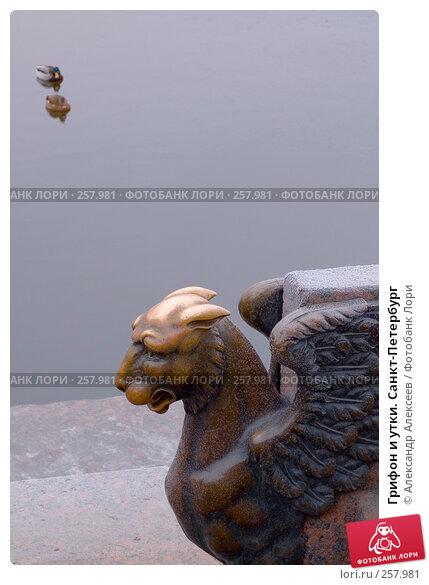 Грифон и утки. Санкт-Петербург, эксклюзивное фото № 257981, снято 26 декабря 2006 г. (c) Александр Алексеев / Фотобанк Лори