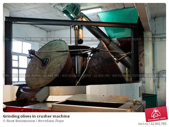Grinding olives in crusher machine. Стоковое фото, фотограф Яков Филимонов / Фотобанк Лори