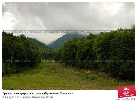 Грунтовая дорога в горах (Красная Поляна), фото № 150005, снято 16 августа 2007 г. (c) Петухов Геннадий / Фотобанк Лори